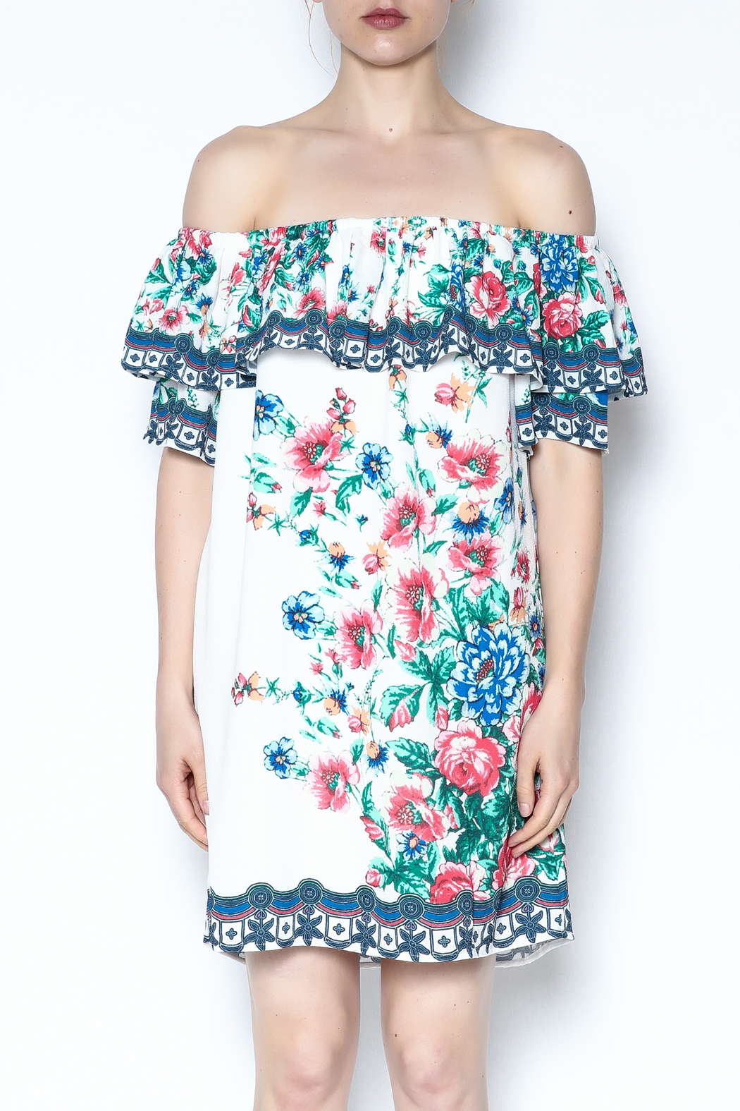 Jealous Tomato Garden Party Floral Dress - Front Full Image