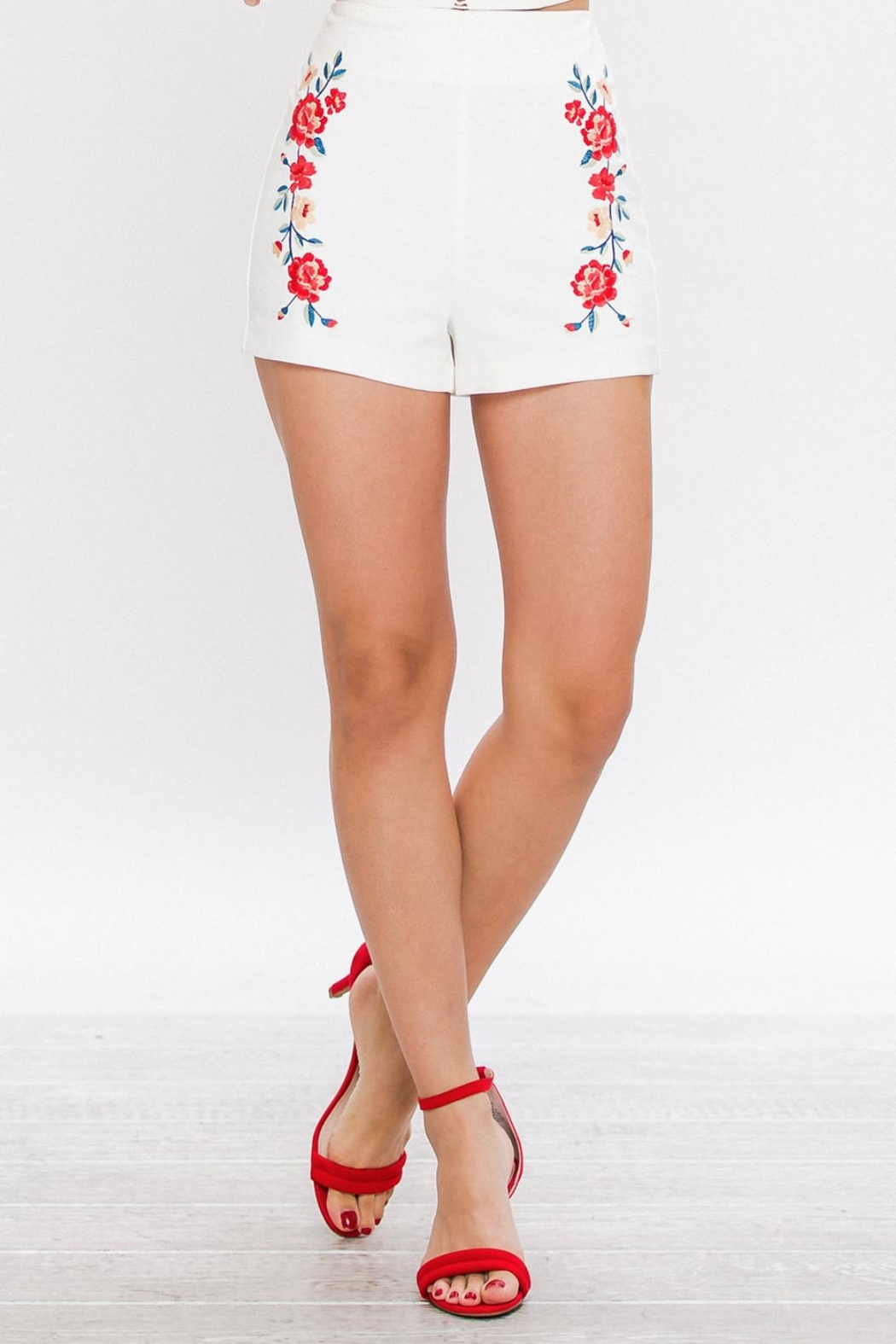 Jealous Tomato Embroidered High Waisted Shorts - Main Image