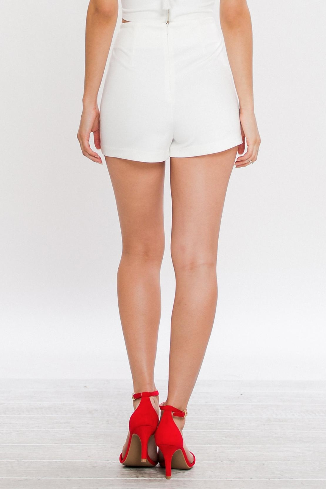 Jealous Tomato Embroidered High Waisted Shorts - Front Full Image