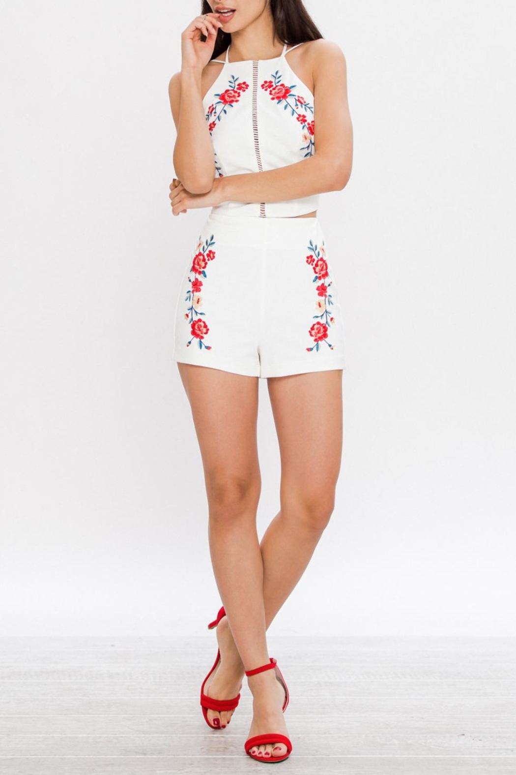 Jealous Tomato Embroidered High Waisted Shorts - Side Cropped Image