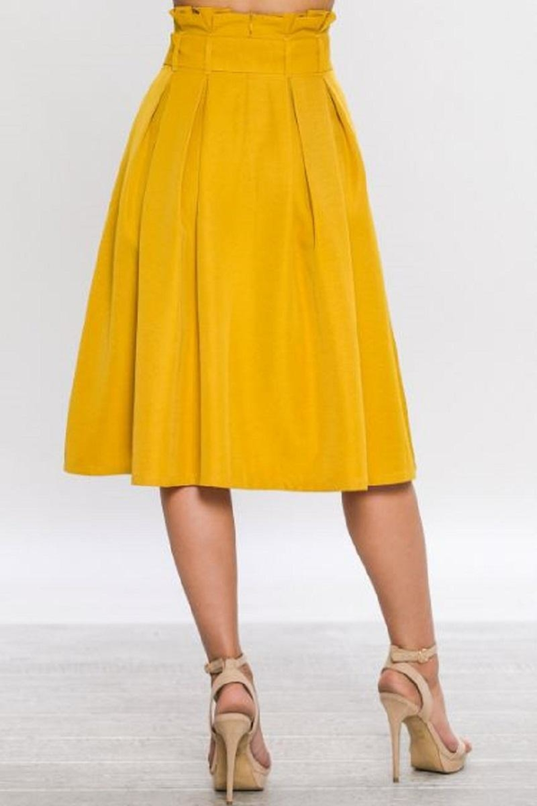 Jealous Tomato Belted A-Line Skirt - Front Full Image