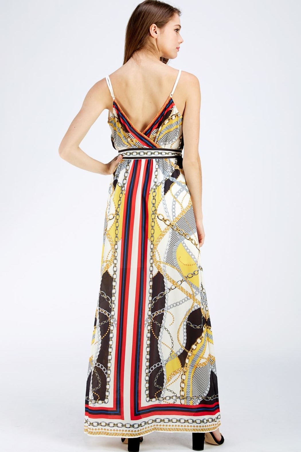 Jealous Tomato Printed Maxi Dress - Back Cropped Image