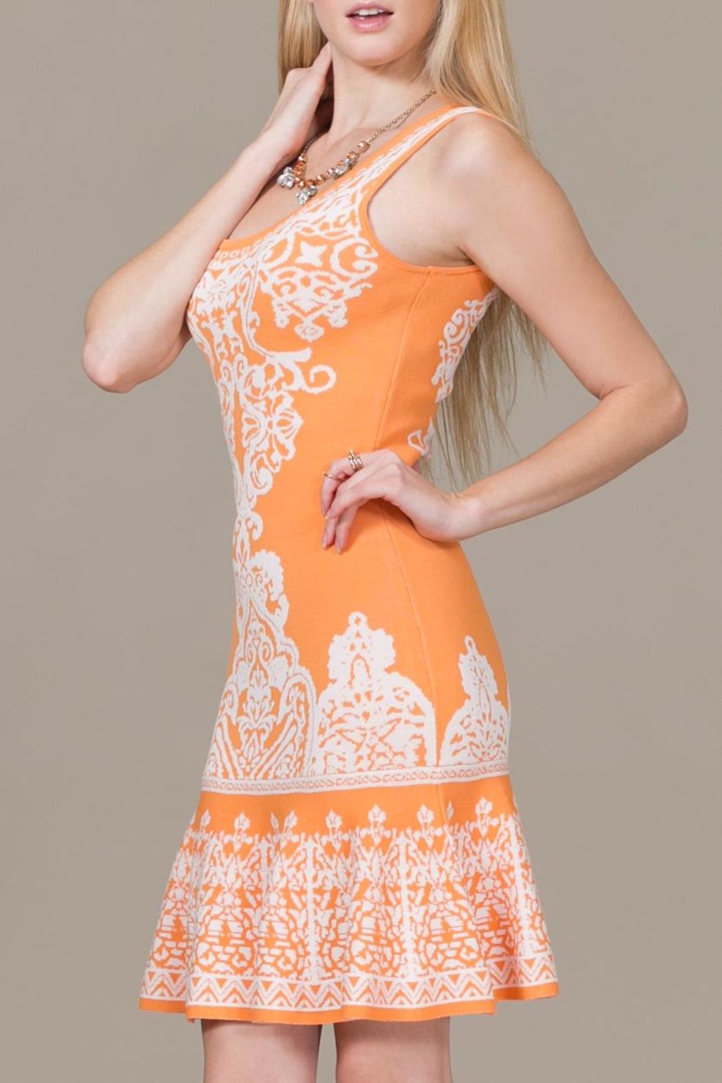 Jealous Tomato Tangerine Dress - Side Cropped Image