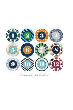 Shoptiques Product: Milestone Sticker Set