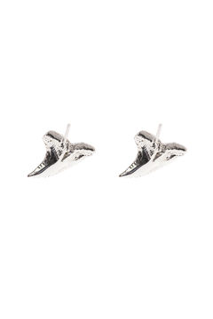 Shoptiques Product: Shark Tooth Stud Earrings