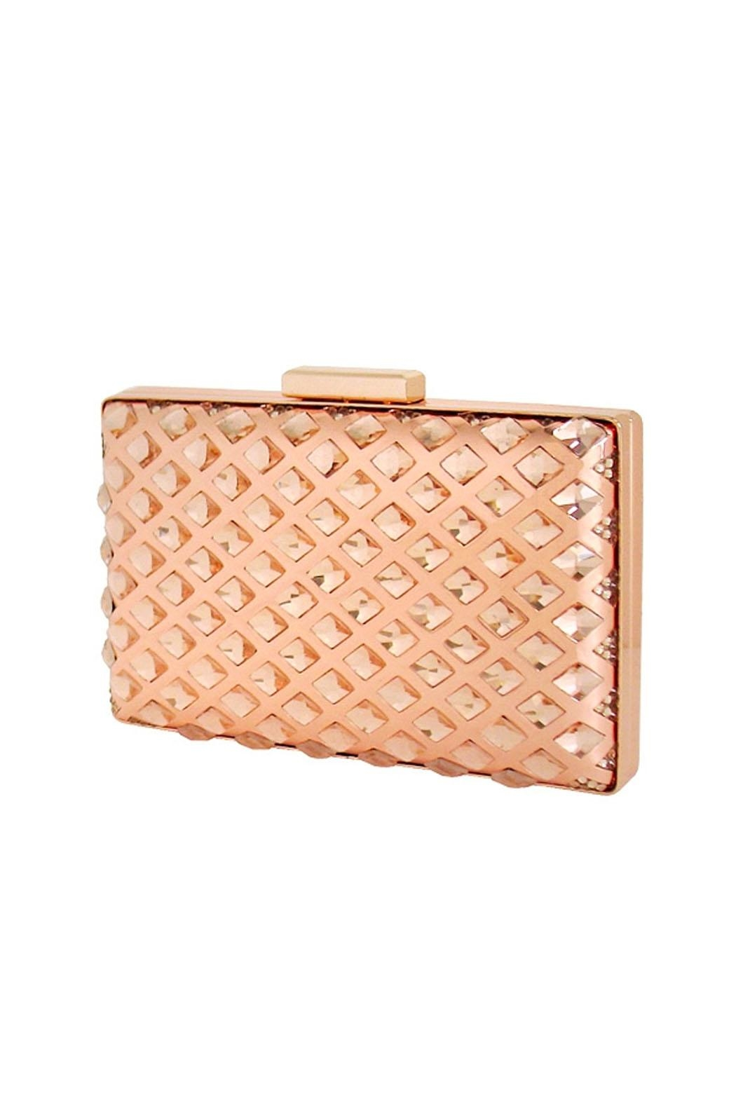 JNB Embedded Crystal Clutch - Front Cropped Image