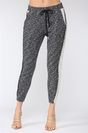 Fate Jogger pants with Side Panel French Terry - Product Mini Image