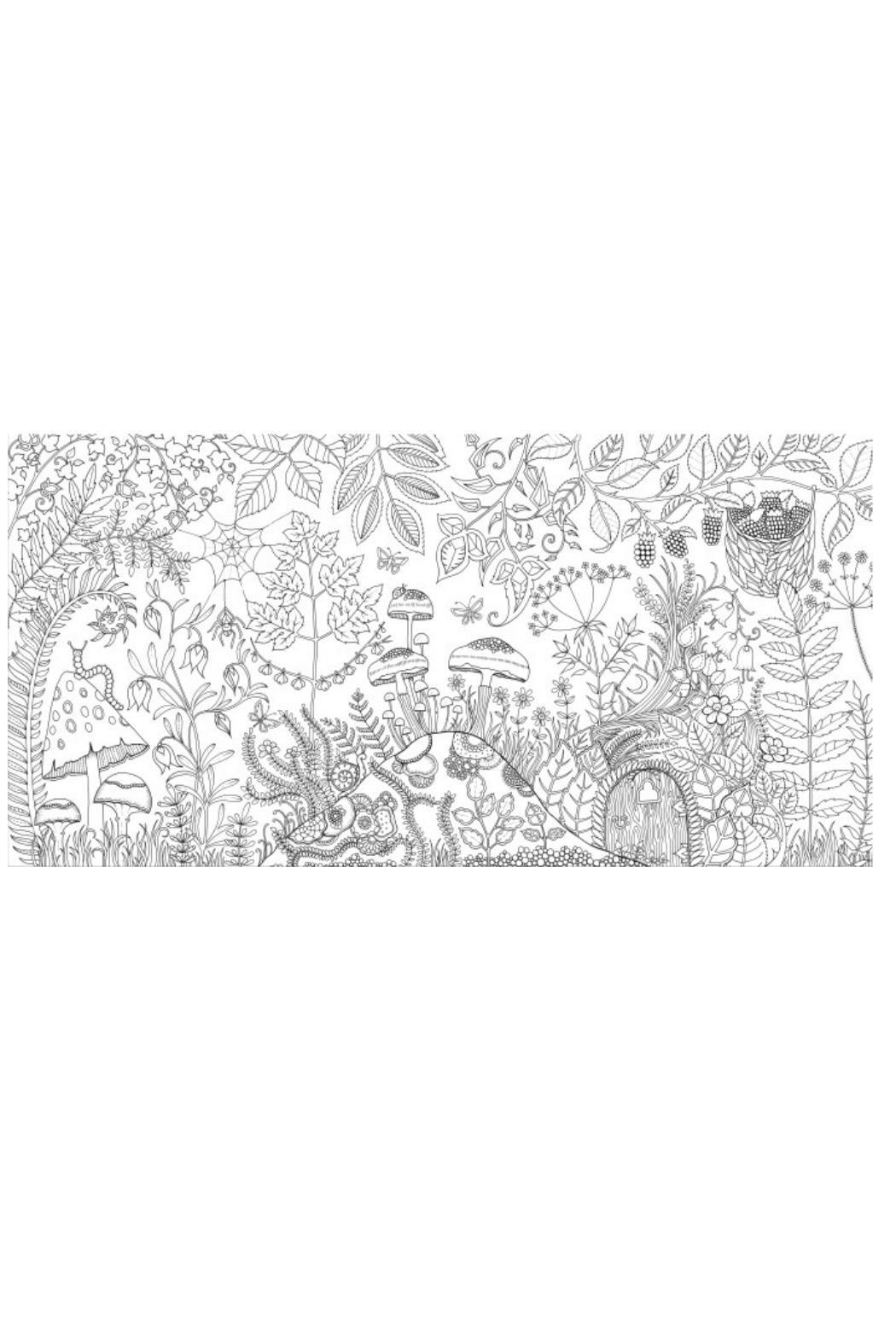 Johanna Basford Enchanted Forest Coloring Book From