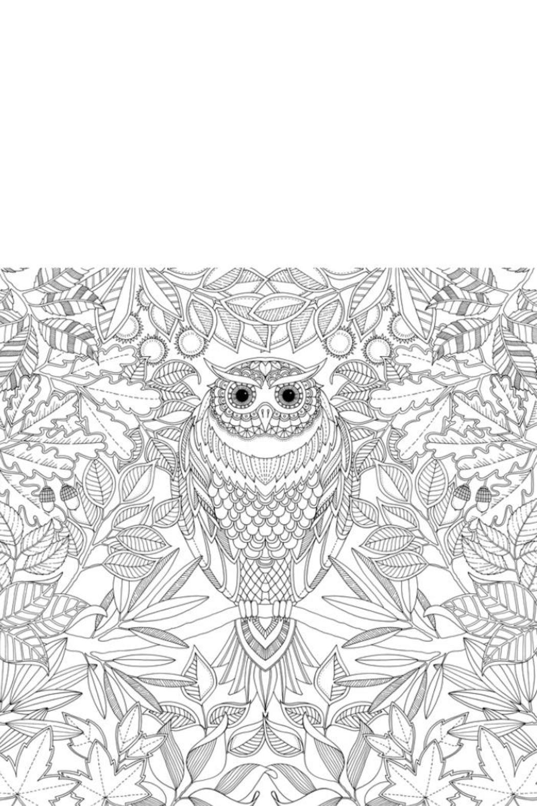 Johanna Basford Secret Garden Coloring-Book from Columbus by Happy ...