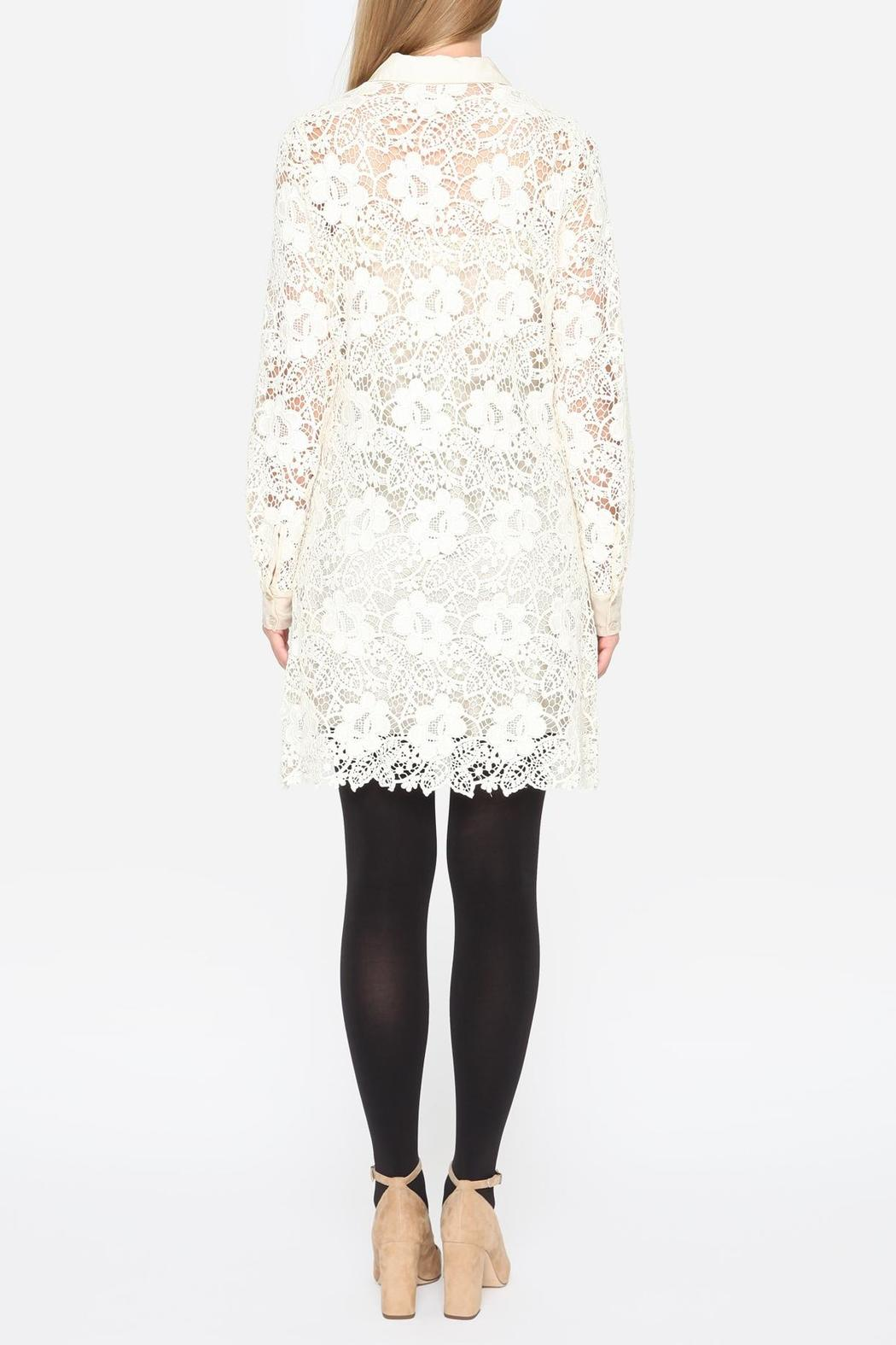 Johnny Was Crochet Sleeve Dress - Back Cropped Image