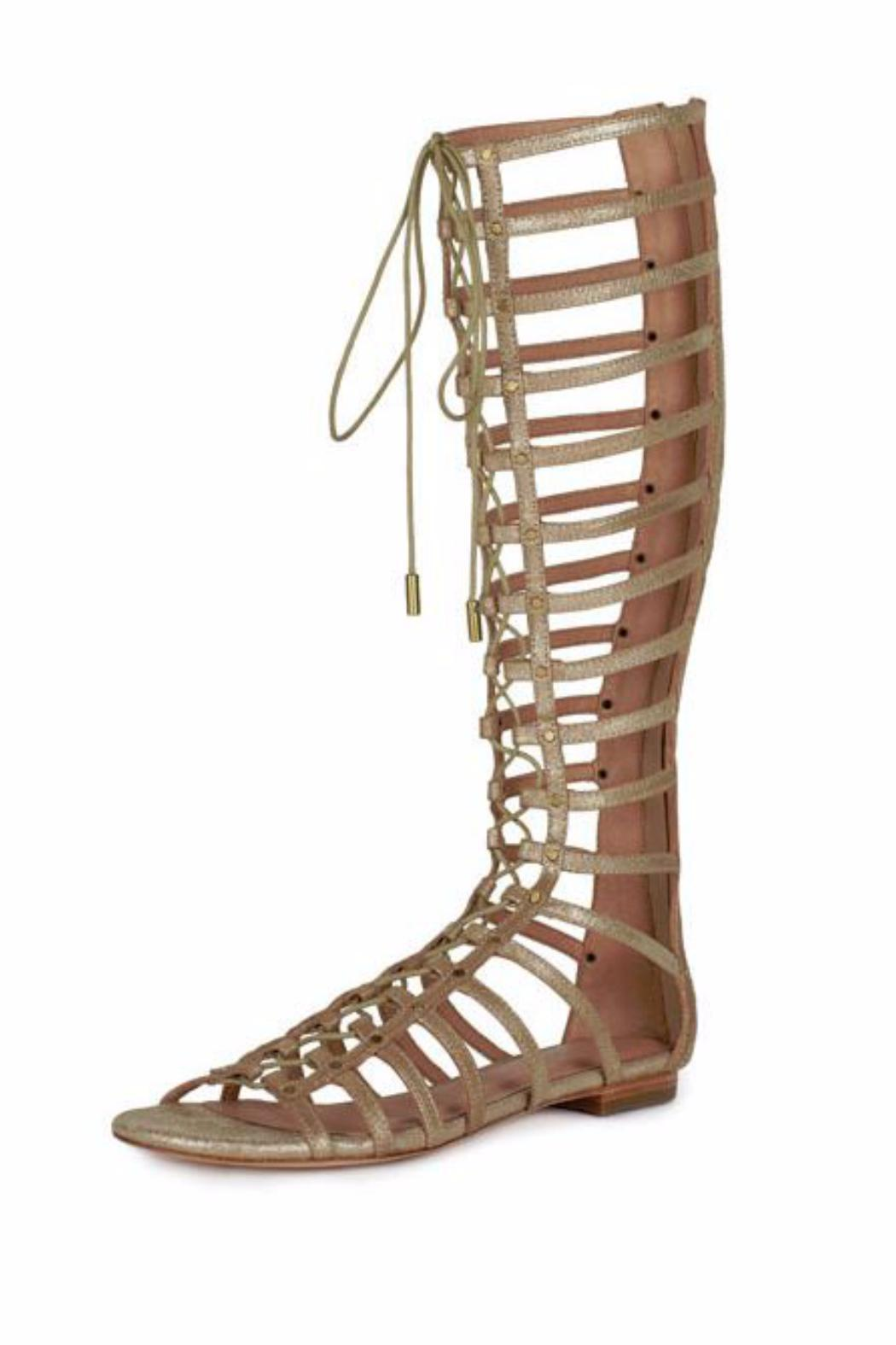 99cf32e44df Joie Falicia Gladiator Sandal from New Hampshire by Stiletto Shoes ...
