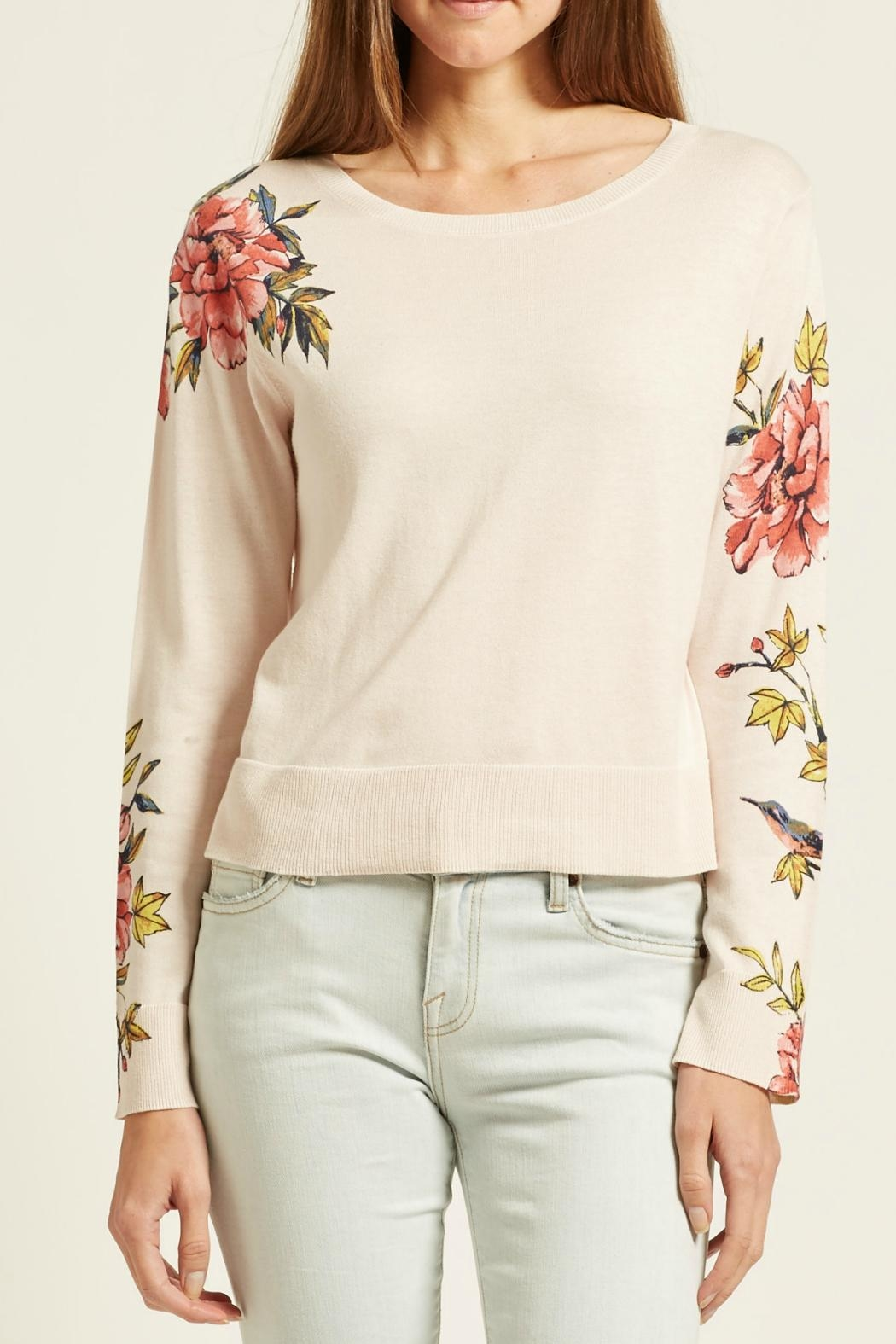 Joie Paari Sweater - Front Cropped Image