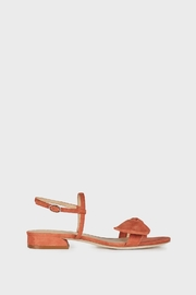 Joie Parthena Desert Red - Back cropped