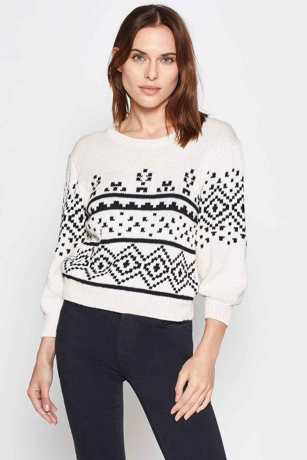 Joie Talena Sweater - Front Cropped Image