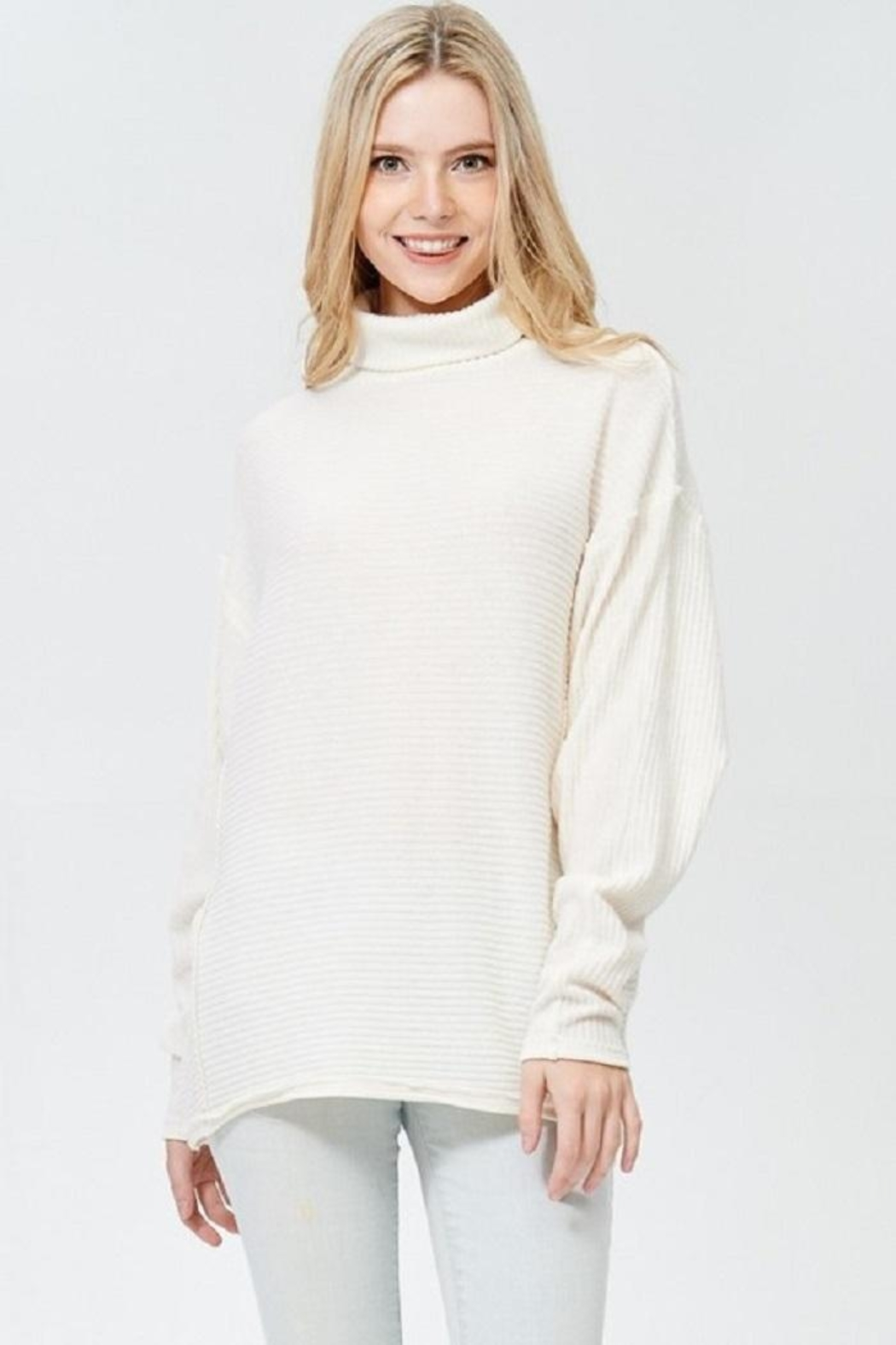 Jolie Turtle Neck Sweater - Front Full Image
