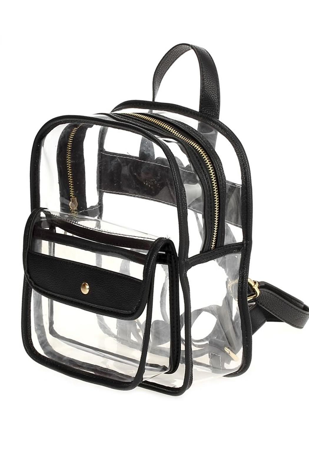 joseph d'arezzo Lucite Backpack - Front Cropped Image