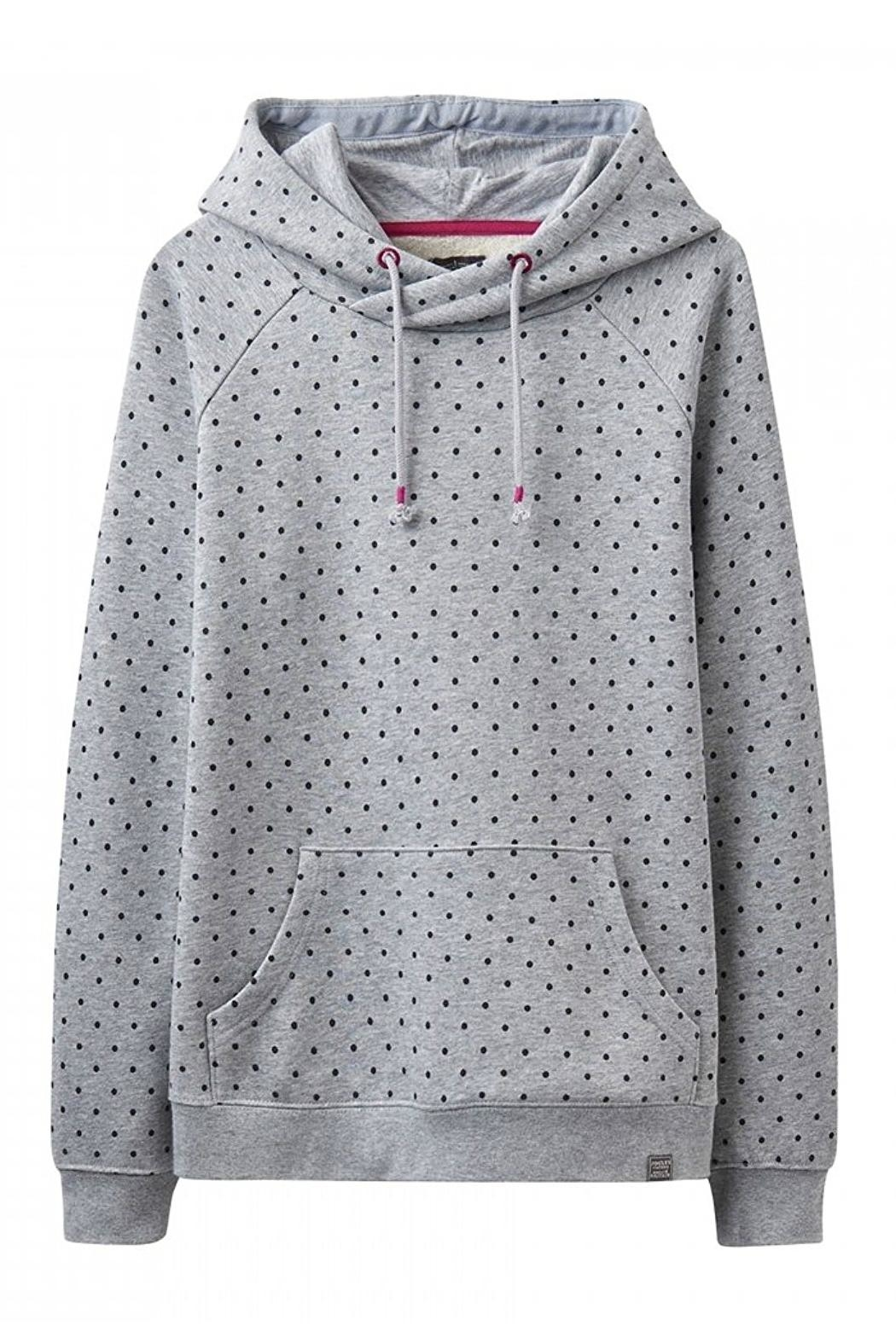 Joules Marlow Hooded Sweatshirt - Front Cropped Image