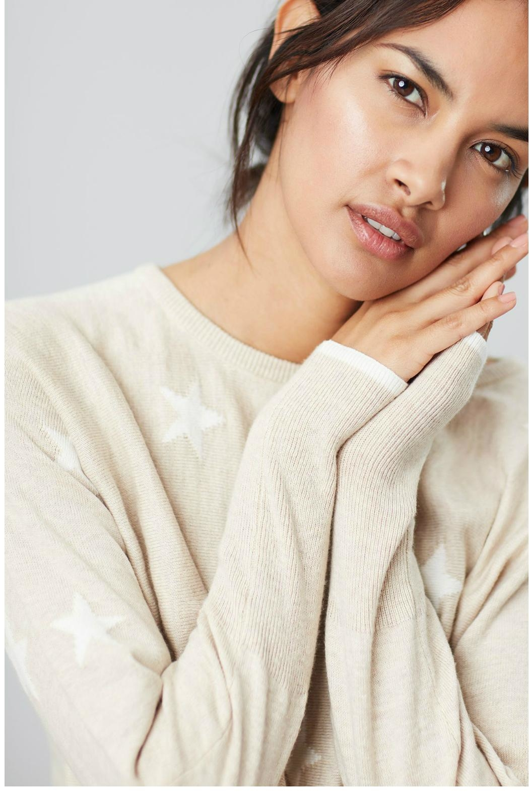 Joules Round Neck Swing Sweater - Back Cropped Image