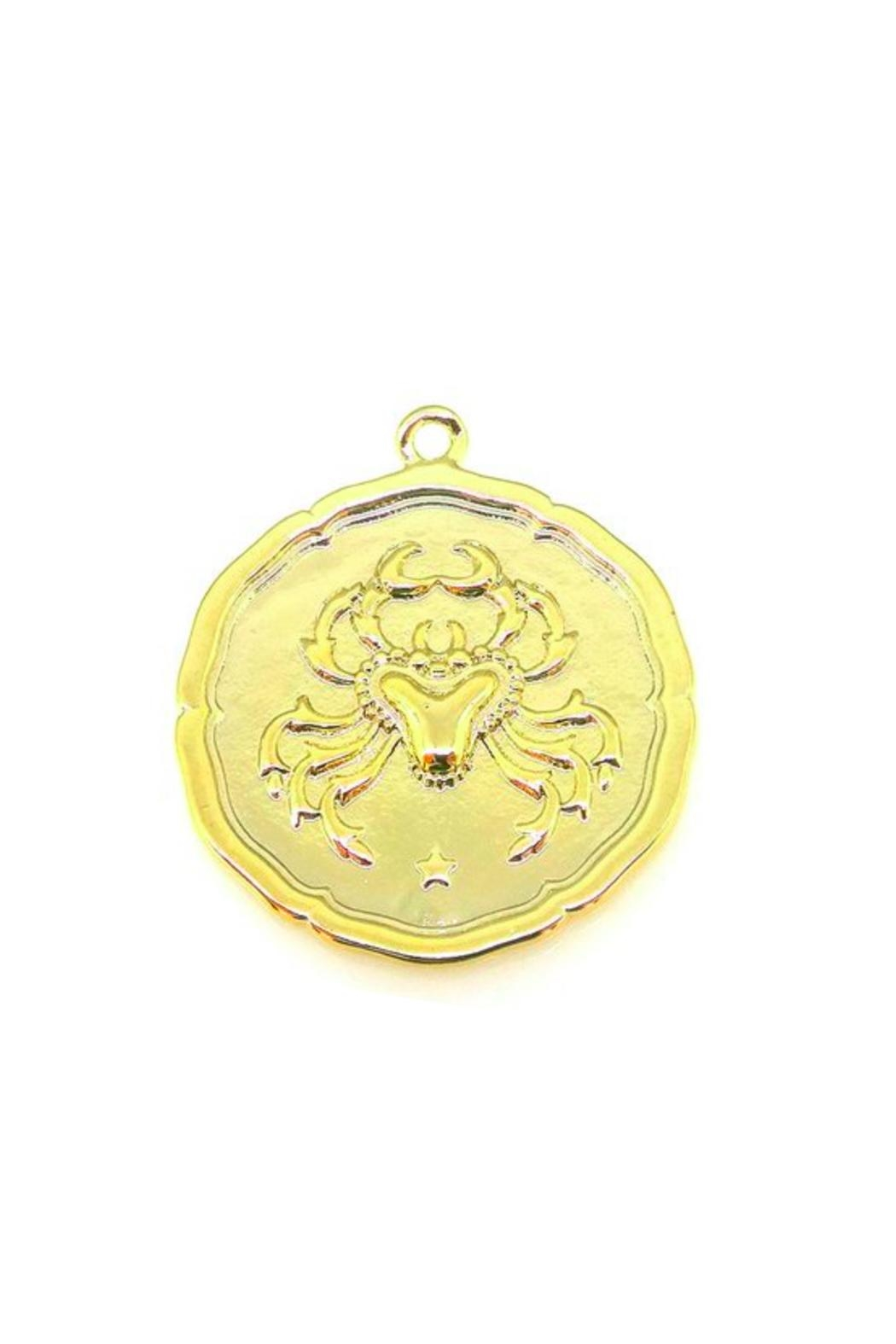 Joy Dravecky Astrology Necklace - Front Full Image