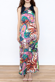 JoyJoy Colorful Paisley Maxi Dress - Front cropped