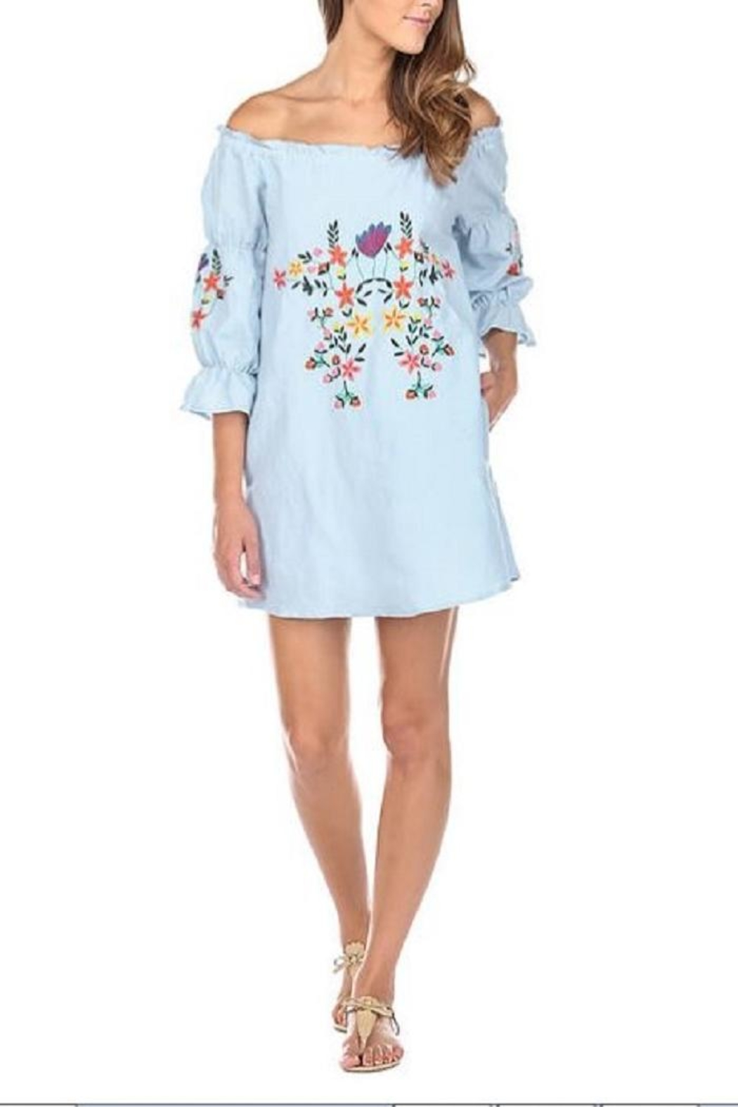 JoyJoy Embroidered Dress - Front Cropped Image