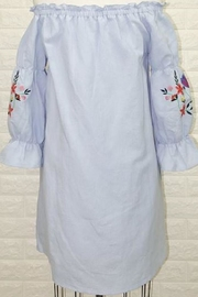 JoyJoy Embroidered Dress - Front full body