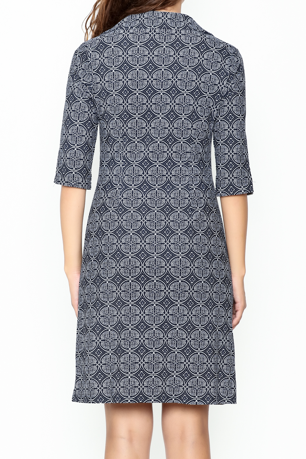 Jude Connally Megan Tunic Dress - Back Cropped Image