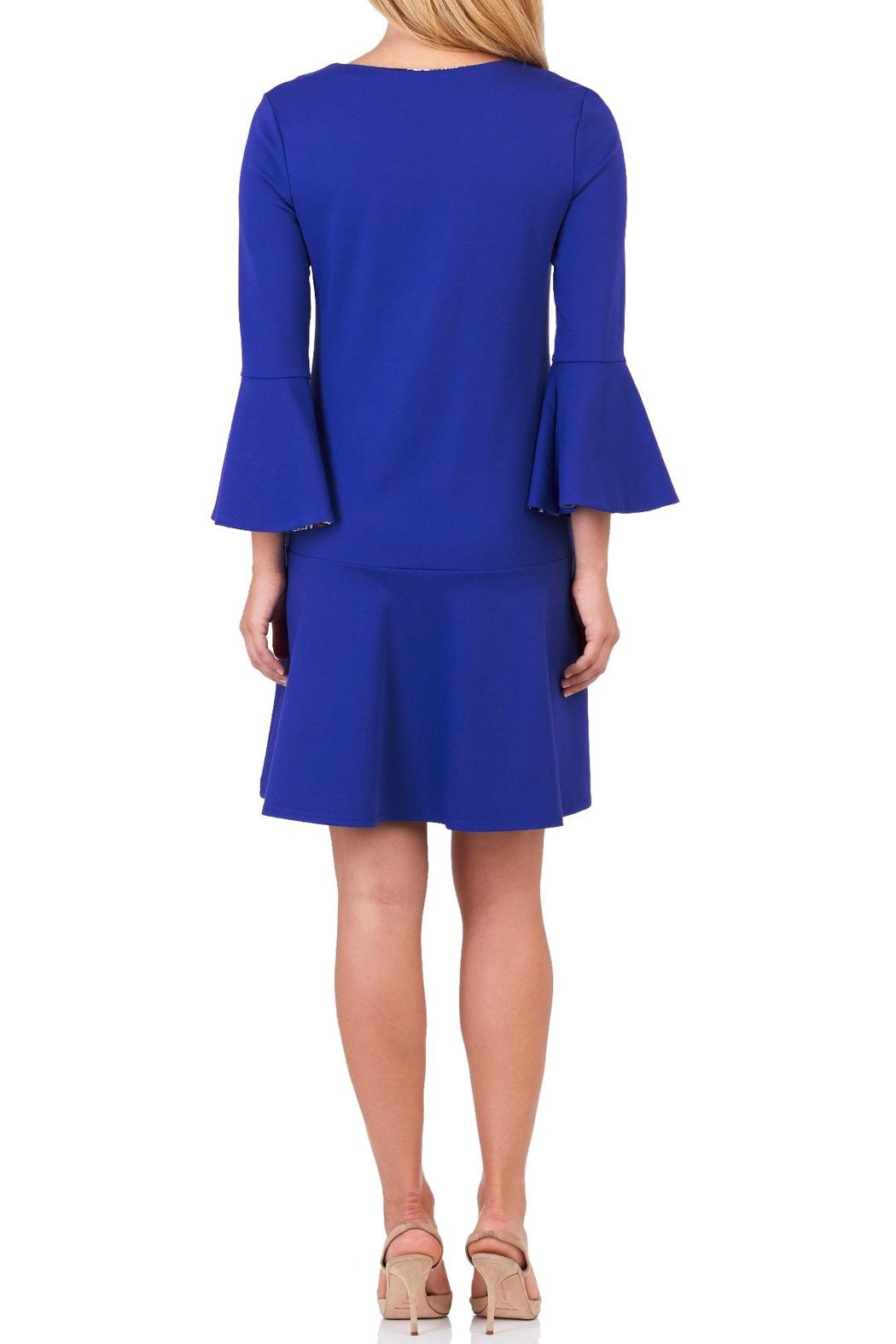 Jude Connally Gabriella Ponte Dress - Front Full Image