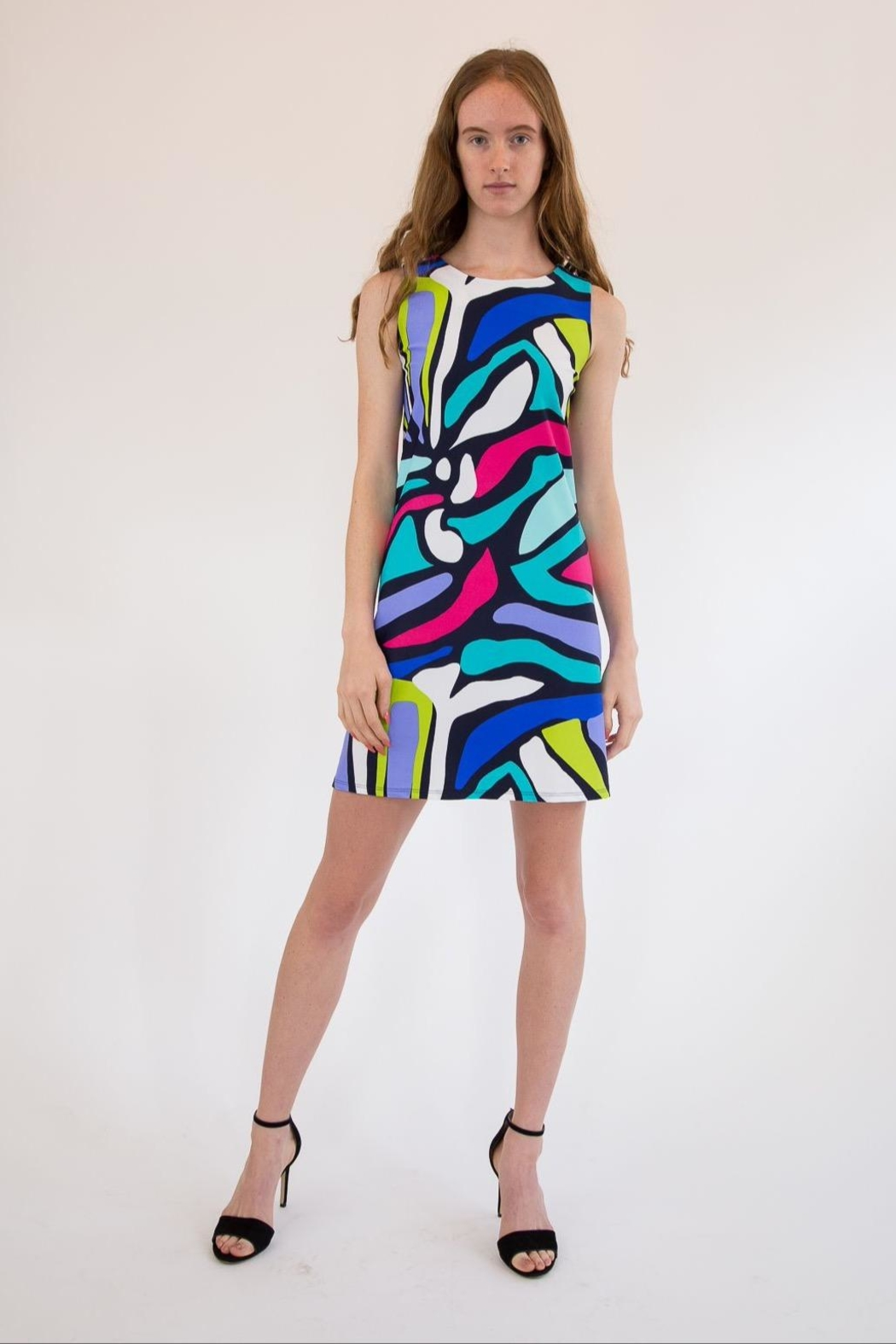 Jude Connally Multicolor Swing Dress - Main Image