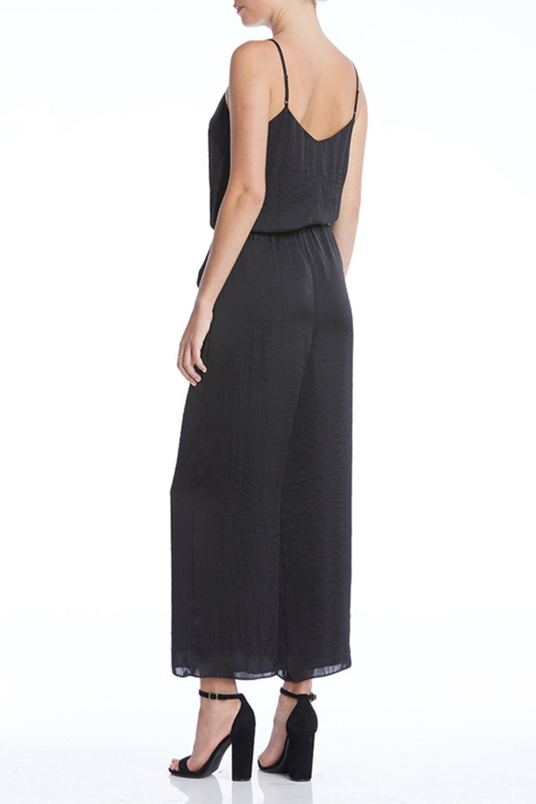 Bailey 44 Juiced Jumpsuit - Back Cropped Image