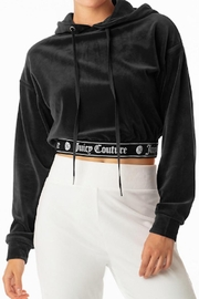 Juicy Couture Cropped Velour Hoodie - Front cropped