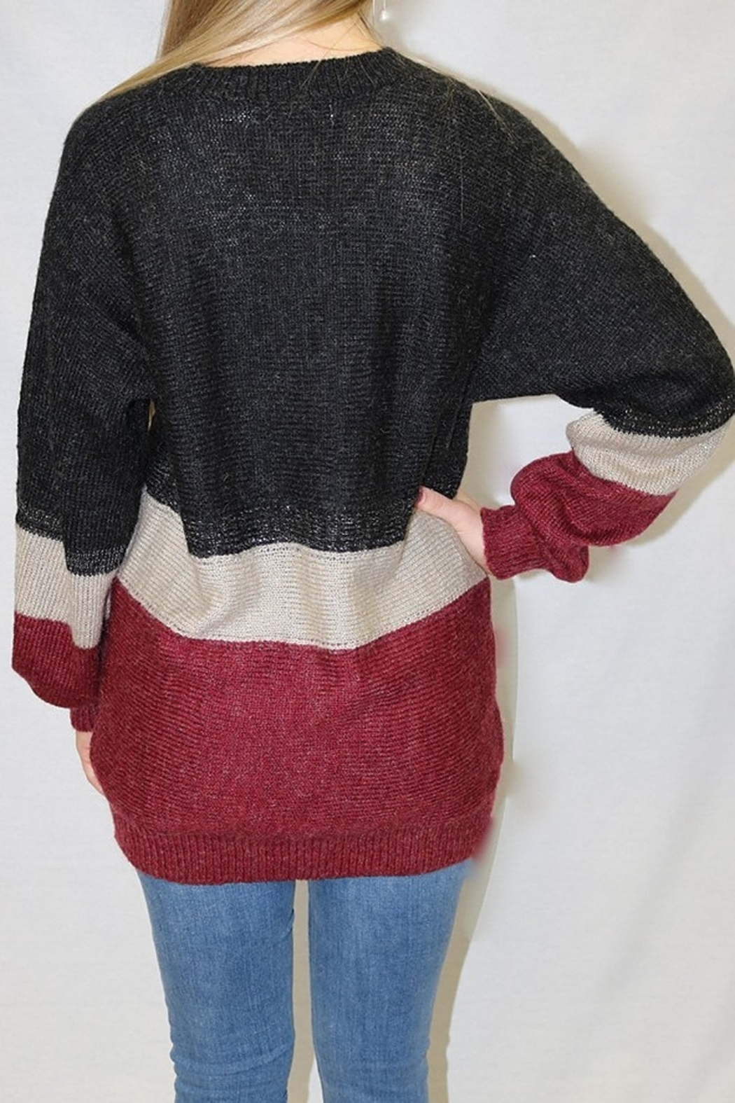 Bishop + Young Jules Tunic Colorblock Sweater - Front Full Image