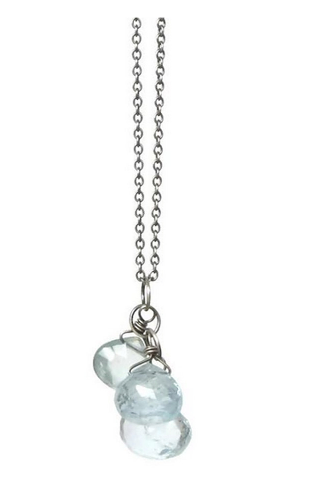 TASI Julia Necklace - Front Cropped Image