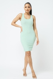 Julia Scoop Neck Bodycon Dress - Back cropped