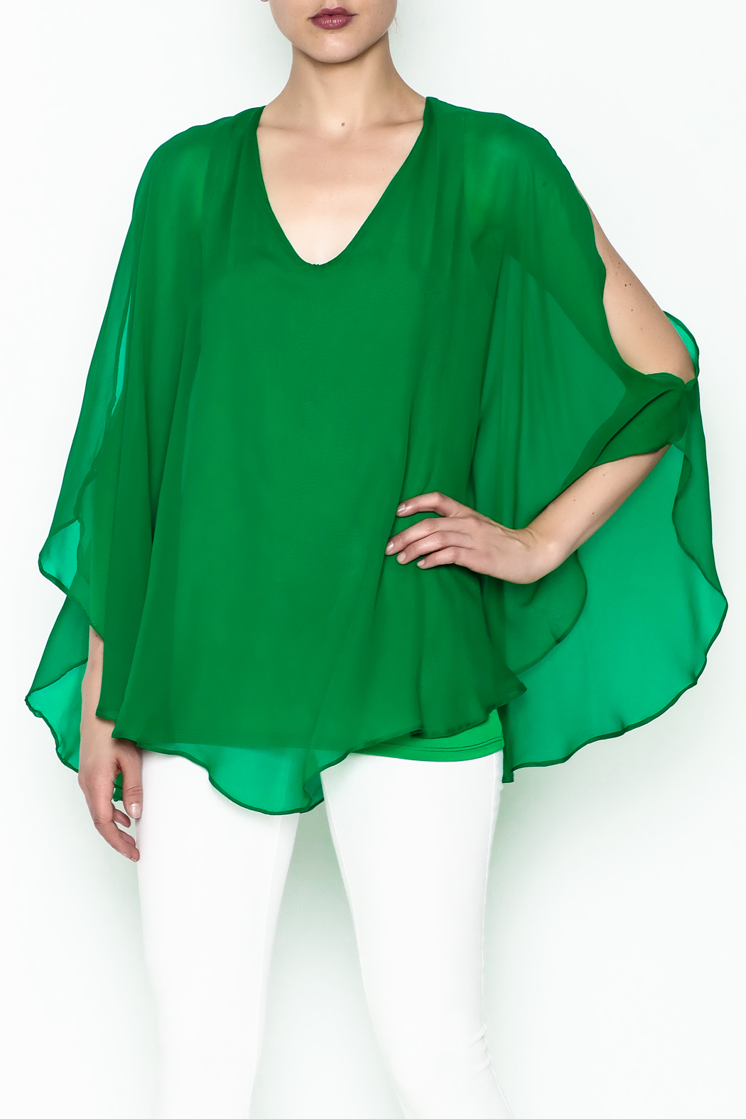 Julian Chang Sheer Overlay Blouse - Front Cropped Image