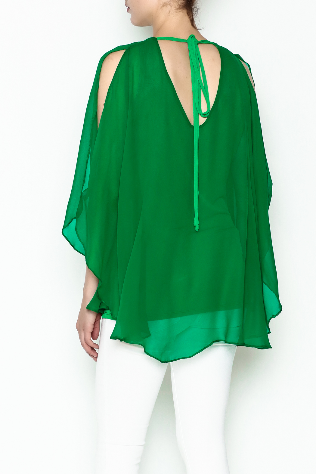 Julian Chang Sheer Overlay Blouse - Back Cropped Image