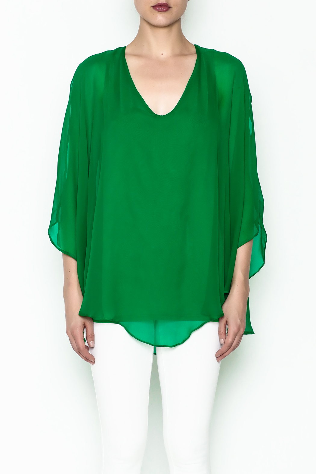 Julian Chang Sheer Overlay Blouse - Front Full Image