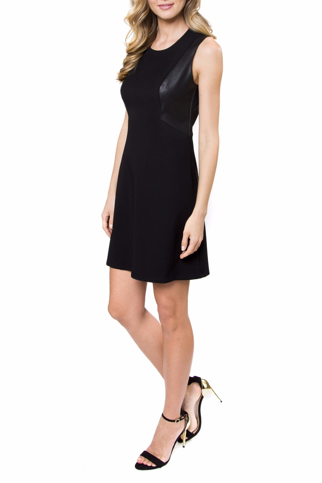 Julie Brown Amanda Leather Dress - Front Cropped Image