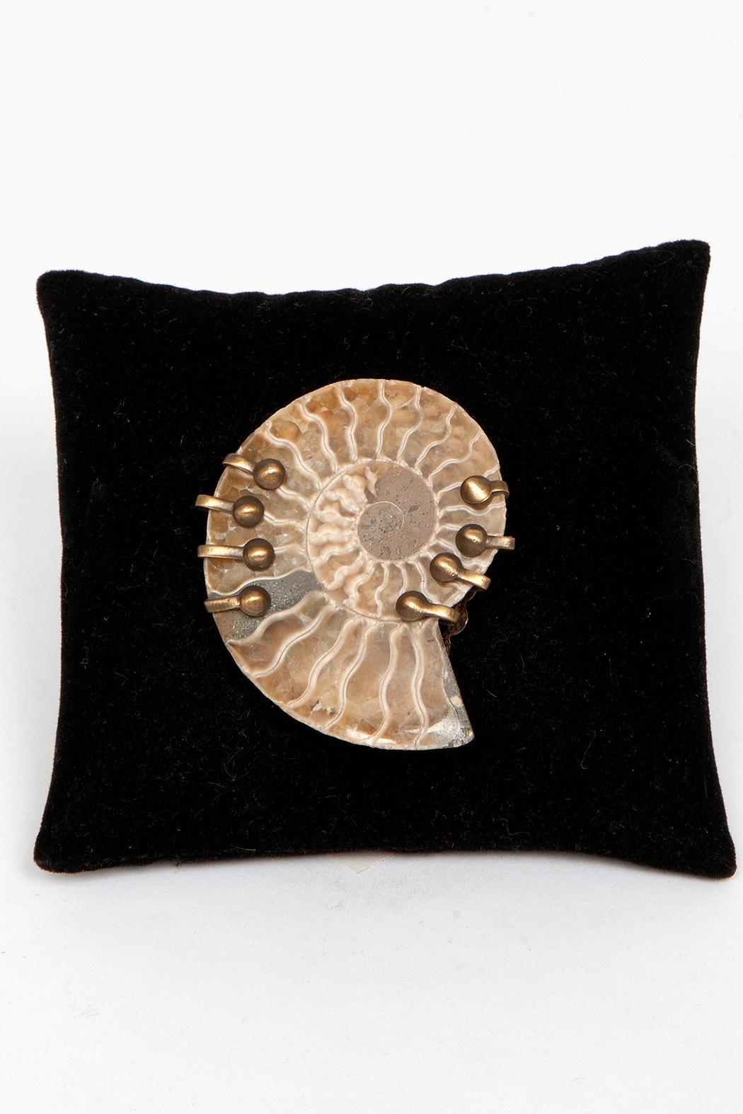 Just Tantau Ammonite Pin - Front Full Image