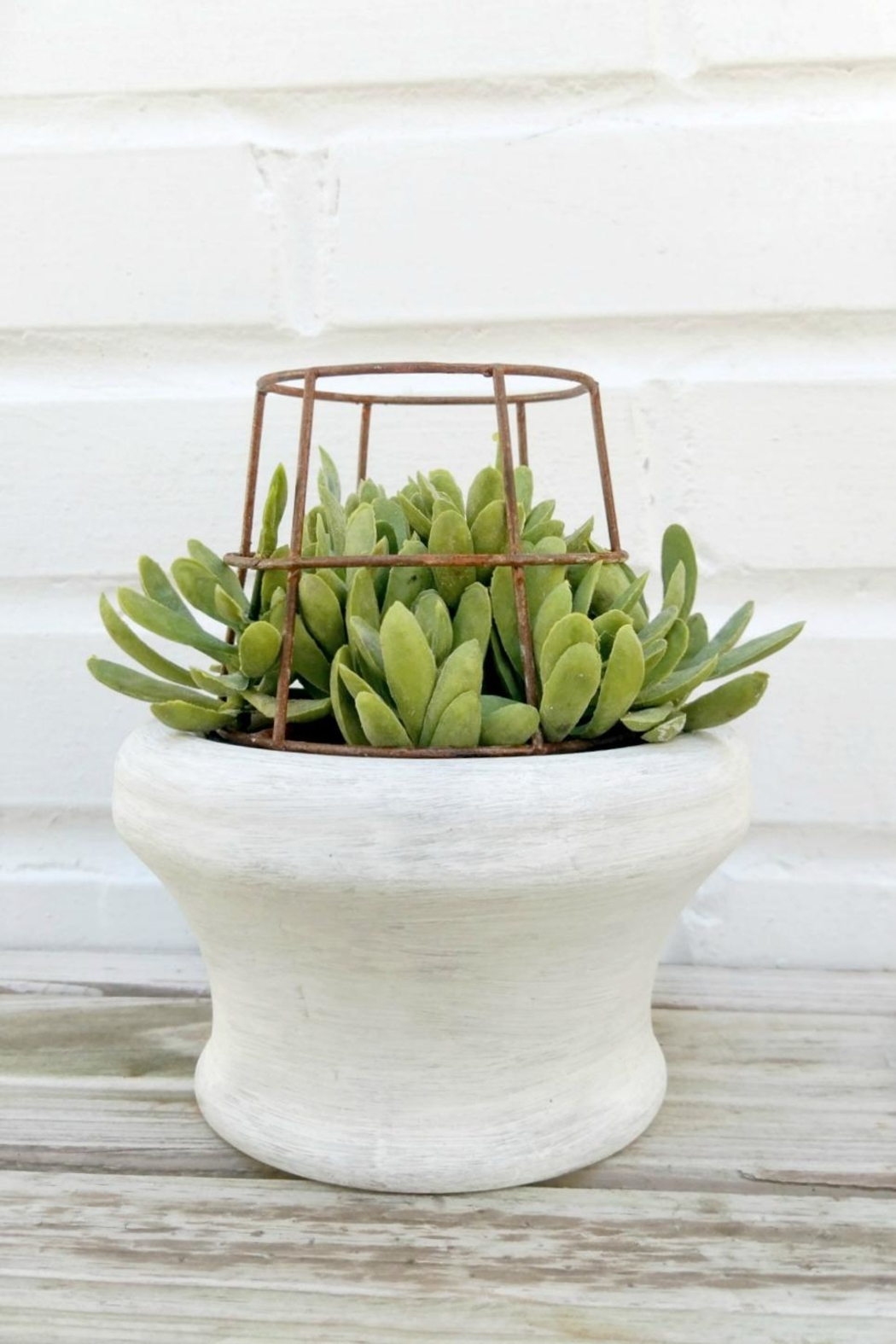 K&K Interiors Faux Caged Succulent - Main Image