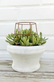 K&K Interiors Faux Caged Succulent - Front cropped