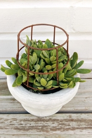 K&K Interiors Faux Caged Succulent - Front full body