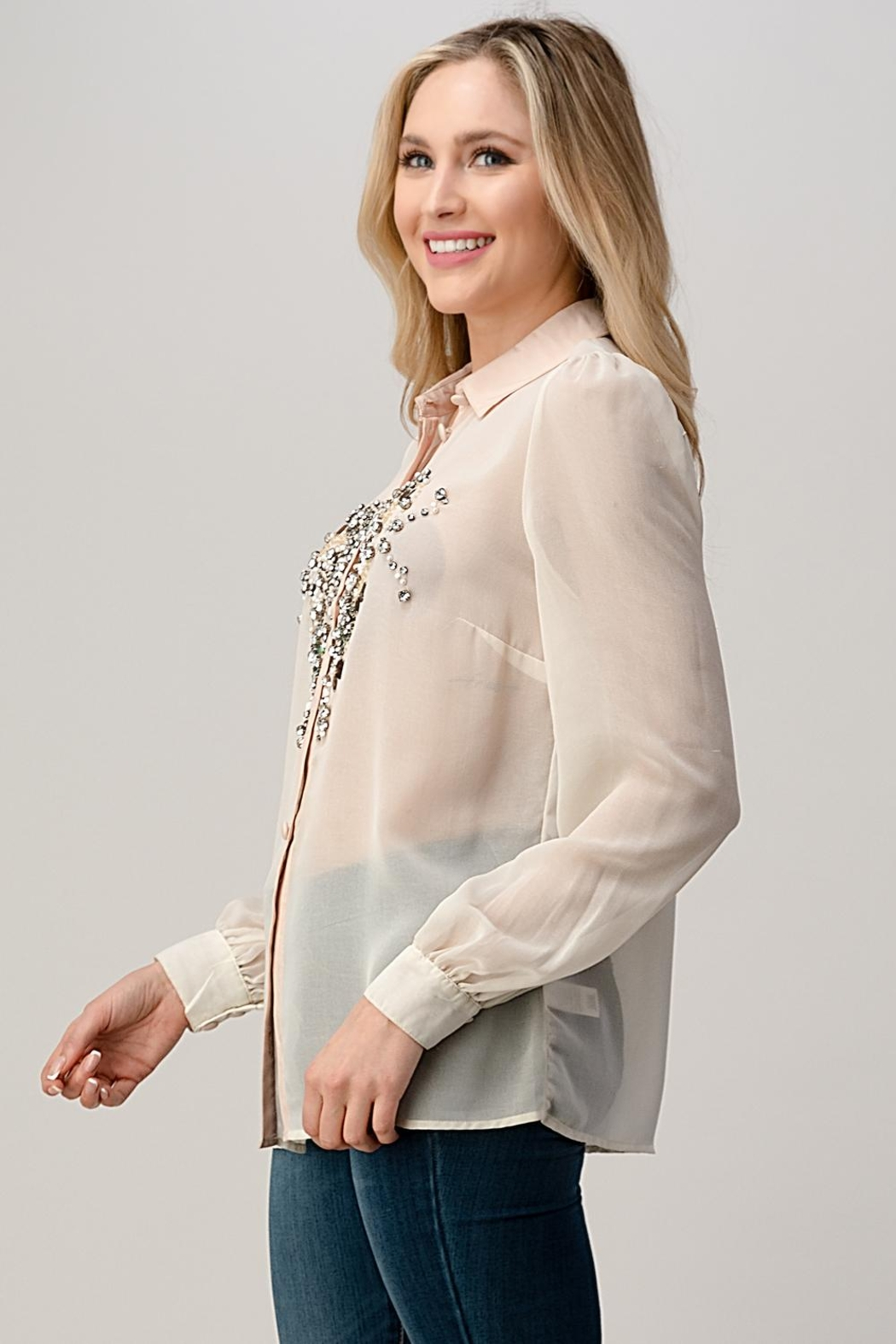 Kaii Mesh Blouse Shirt Top With Beaded Jewel Trim - Front Full Image