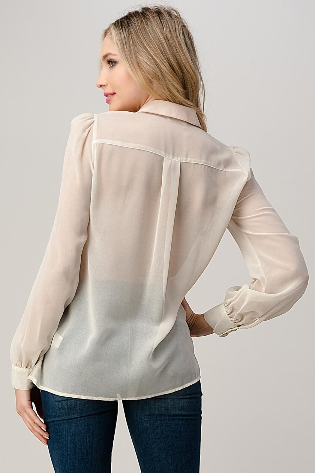 Kaii Mesh Blouse Shirt Top With Beaded Jewel Trim - Side Cropped Image
