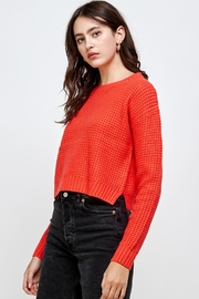 Kaii Waffle Knitted Cropped Sweater Top - Front full body