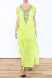 Kareena's Net Sleeveless Maxi Dress - Product Mini Image