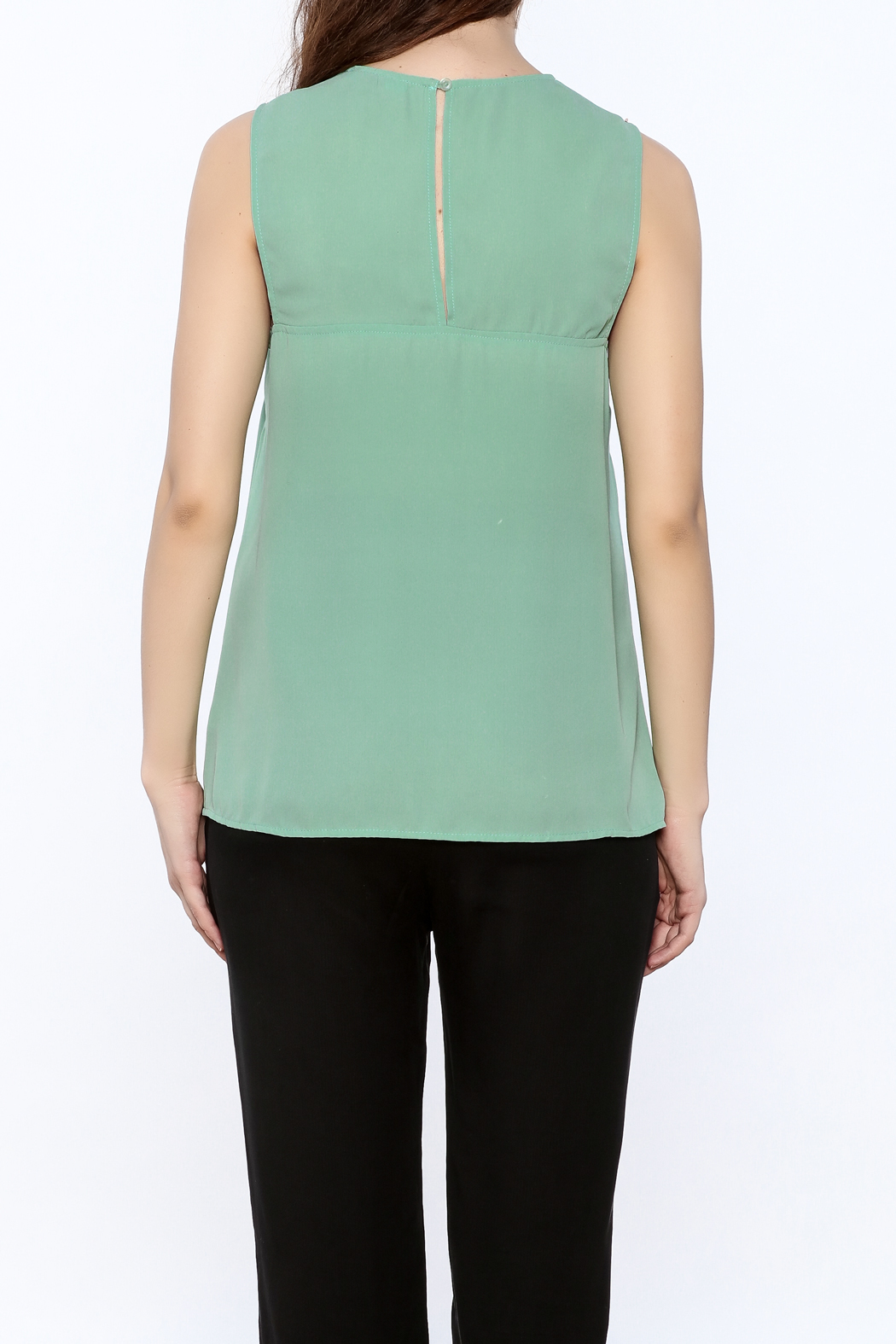 Karlie Mint Green Sleeveless Top - Back Cropped Image