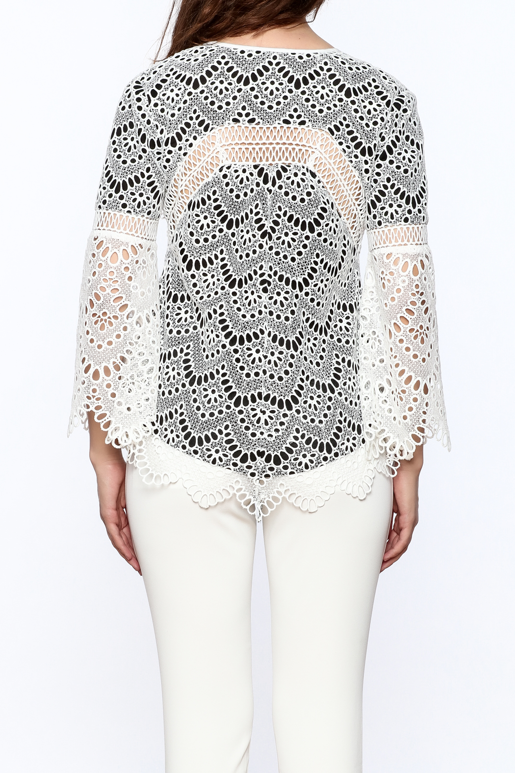 KAS New York Semi Lined Lace Top - Back Cropped Image