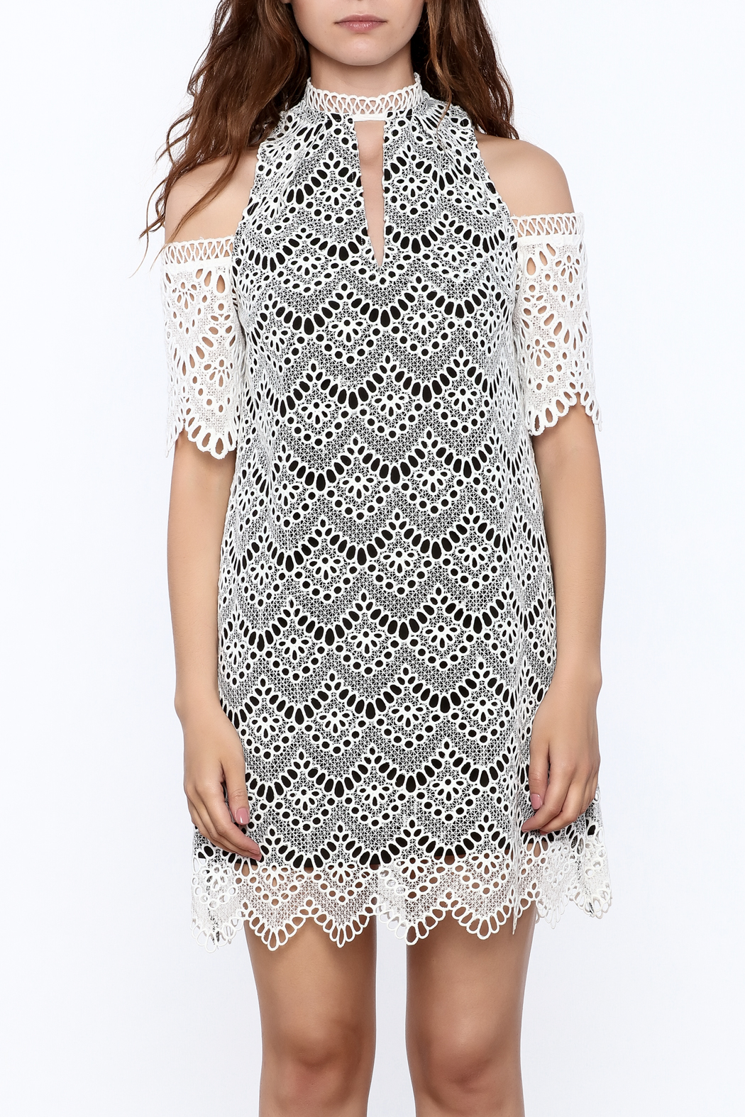 KAS New York Semi Lined Lace Dress - Side Cropped Image