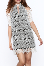 KAS New York Semi Lined Lace Dress - Front cropped